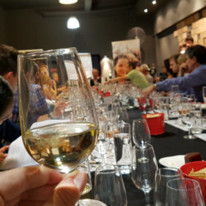Wine and Cheese team bonding Sydney